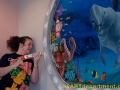 Healthcare Mural - Kids Playroom - Cindy Chinn