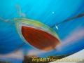 Underwater Mural for Dentist's Office - Rowboat