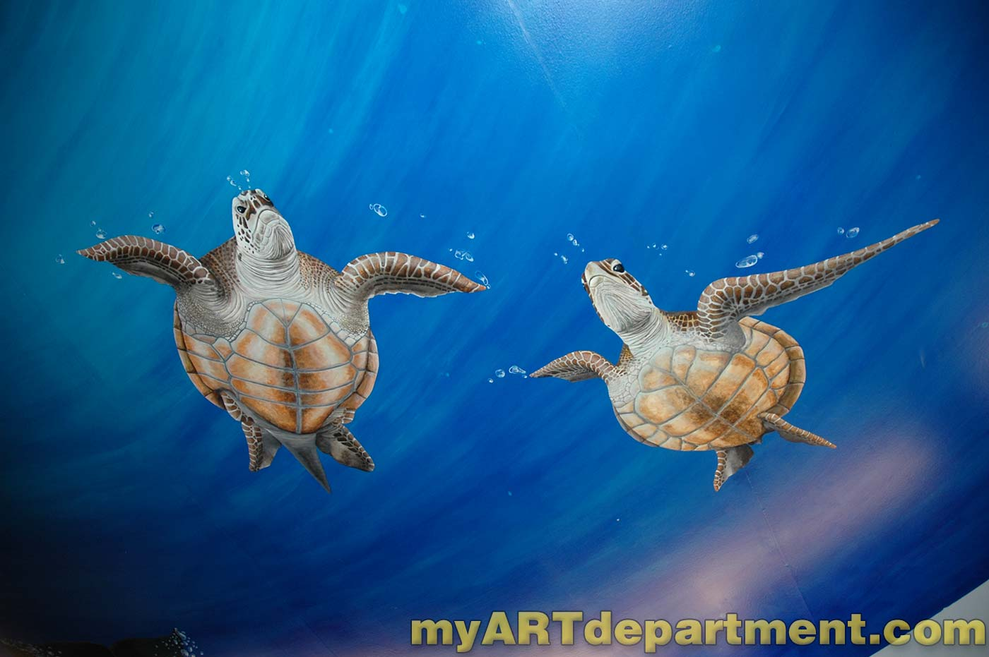 Underwater Mural For Dentist S Ceiling With Dolphins